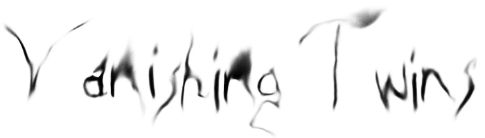 VanishingTwins.Logo.Big